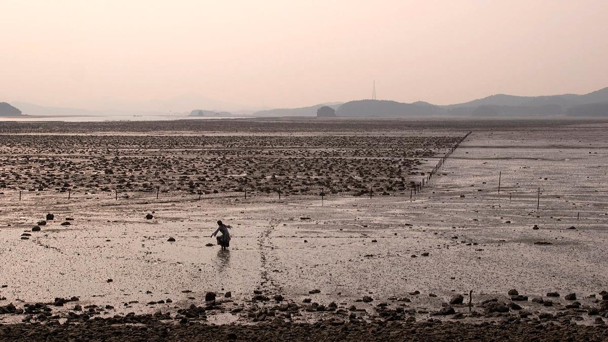 Enticing the Tide, film Still from video-performance in mudflat, Global Nomadic Art Project-Korea III, Taean, South Korea © Cherie Sampson 2016